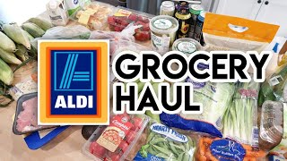 $126 Aldi Haul and Meal Plan 😁 Grocery Haul 🛒 June 9 2019
