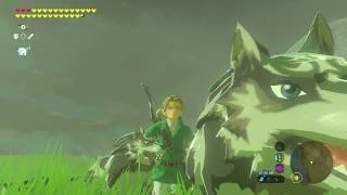 Breath Of The Wild | Wolf Link Army