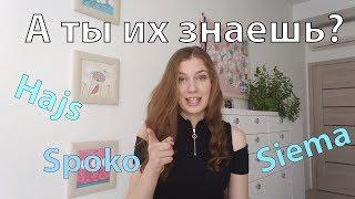 Учим польский язык: 10 сленговых слов, которые нужно знать ВСЕМ