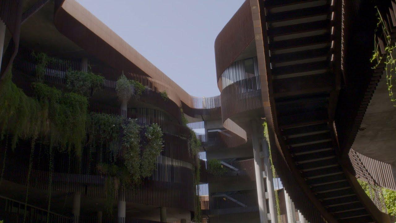 University of Arizona Campus