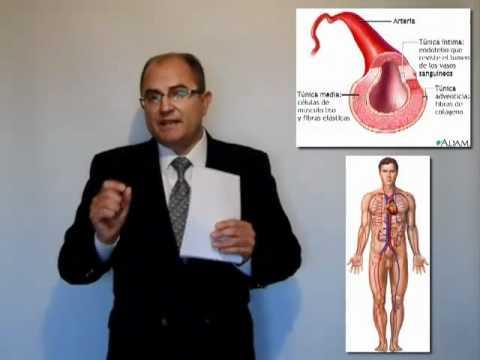Protocolo de hipertensión y tratamiento angina