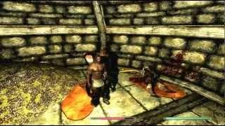 Path of Shadows Mod Bug for Skyrim