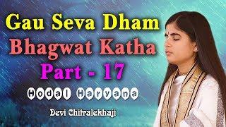 गौ सेवा धाम भागवत कथा पार्ट - 17 - Gau Seva Dham Katha - Hodal Haryana 18-06-2017 Devi Chitralekhaji