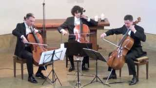Bach Gamba Sonata No. 1 G Major on 3 Celli live in concert