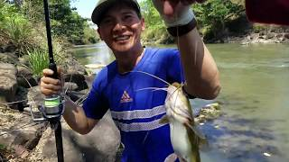 SĂN CÁ SUỐI đụng ổ Cá Lăng  l Nướng cá nhậu bên suối cùng anh em Đồng Nai