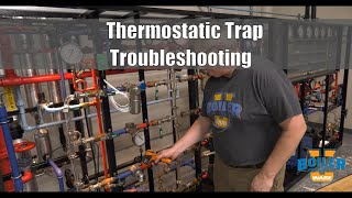 Steam Traps | Thermostatic Traps Troubleshooting