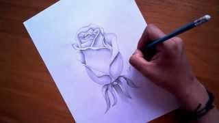 Como Dibujar Una Rosa - Esporarte.com