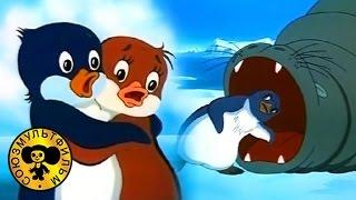 Приключения пингвиненка Лоло | Советские мультики для детей