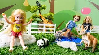 Barbie, Ken y Chelsea van al zoológico. Vídeo educativo