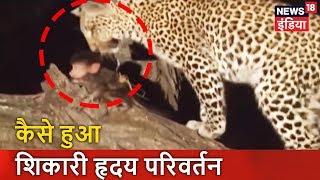कैसे हुआ शिकारी 'हृदय परिवर्तन'?   जंगल में एक अनोखा रिश्ता   Pata Chala Hai   News18 India