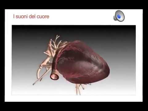 Farmacoterapia dellipertensione arteriosa