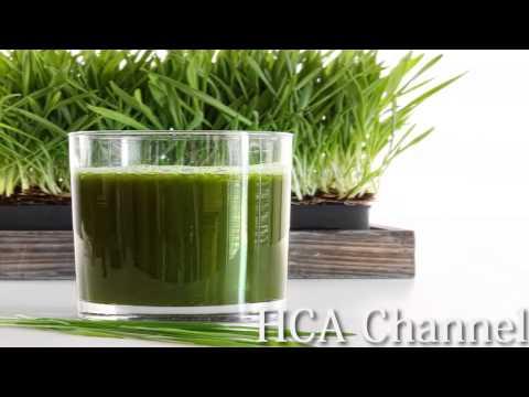 Beneficios del Jugo de Pasto de Trigo (Weathgrass)