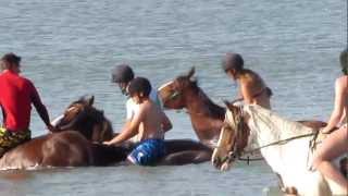 preview picture of video 'Cavale aquatique (Saint jean de monts - 22 août 2012)'