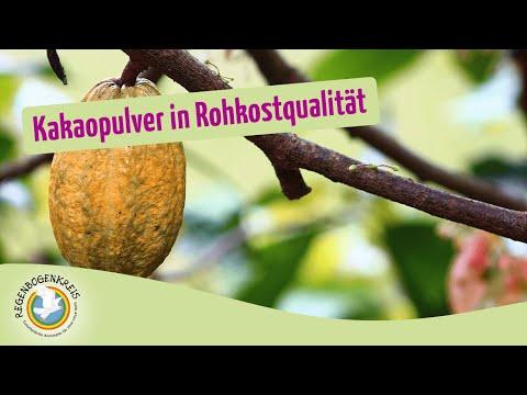 Kakaopulver in Rohkostqualität  | Regenbogenkreis