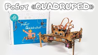 Образовательный набор - Робот «QUADRUPED»