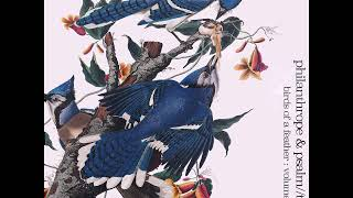 Philanthrope & Psalm Trees - Birds of a Feather [Full Album]