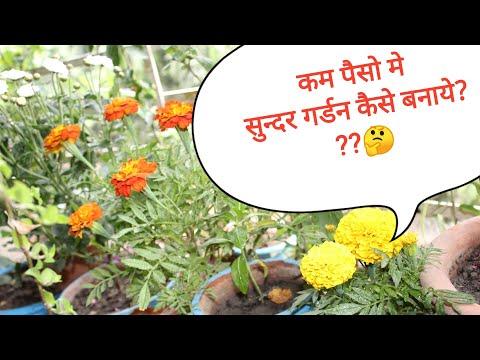 कम पैसो मे सुन्दर गर्डन कैसे बनाये? ...Low budget Gardening//Balcony Garden