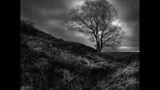 Strigon - Mourning soul (Absurd cover)