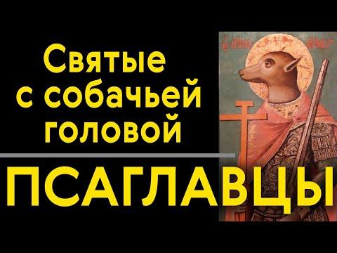 Астролог лилия новосибирск
