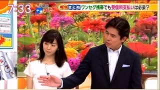 総務省ワンセグ受信料NHKの契約実態を聴取へ