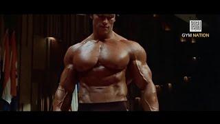 Myśl na wielką skalę (Arnold Schwarzenegger)