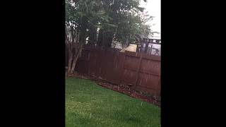 Lightening hit my house and my neighbor caught it on video!