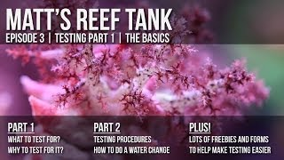preview picture of video 'Matt's Reef Tank | Episode 3 | Testing Part 1 -- the Basics'