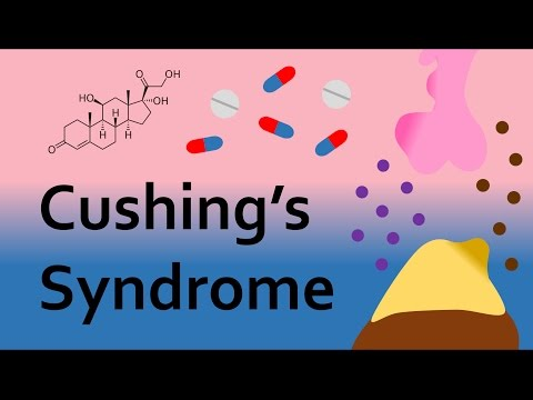 Video Cushing's Syndrome and Corticosteroids (Part 2)