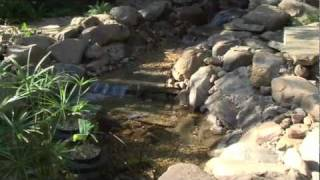 Smartponds How To Build A Pond Or Water Feature