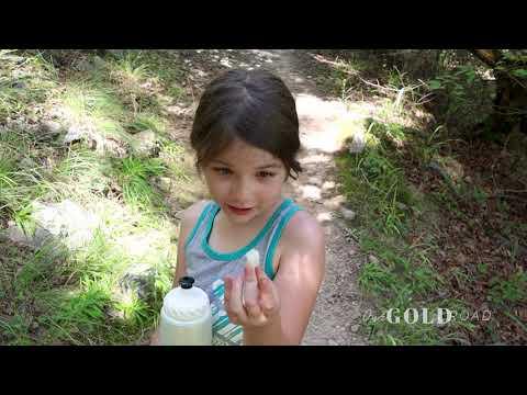 Video Of Lake Ouachita State Park, AR