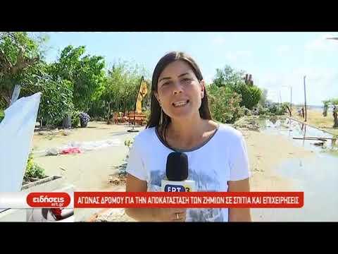 Μετρούν τις πληγές του οι κάτοικοι της Χαλκιδικής | 12/07/2019 | ΕΡΤ