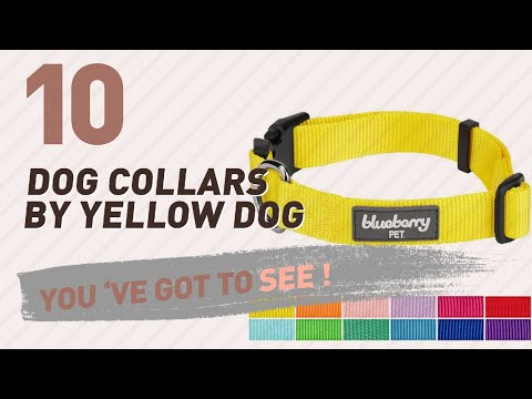 Dog Collars By Yellow Dog // Top 10 Most Popular