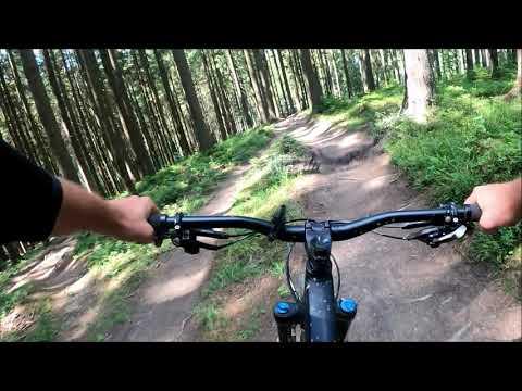 Single Trails Bílá 2020 Medvěd