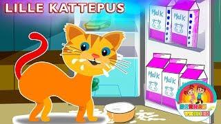 Lille kattepus  | Barnesanger på norsk | Norske Barnesanger