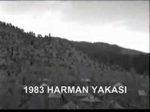 1983 YILINDA BADEMLİ