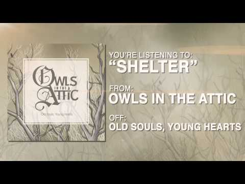 Owls in the Attic - Shelter