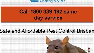 Sparkling Pest Control Brisbane
