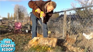 Most Amazing Way To Remove A Tree Stump??