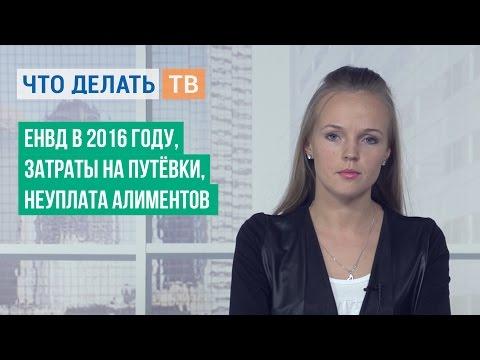Изменения в законах об алиментных выплатах в 2016 году