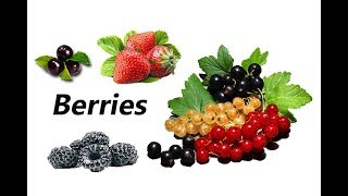 Different Types Of Berries With Pictures And Names