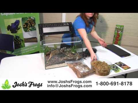 How to Set Up a Habisphere Complete Dart Frog Kit