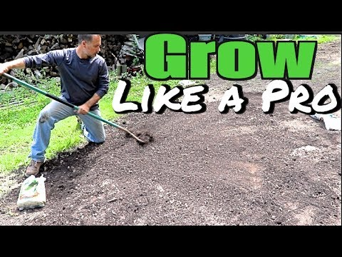 How To Plant A Yard And Grass Seed Like A Pro -  Grow A New Lawn, Overseeding, Yard & Sod Care Tips Mp3