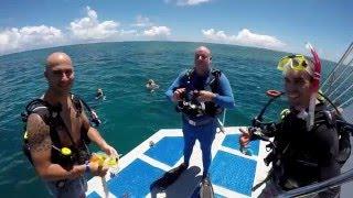 2016 Vessel Evolution in Cairns
