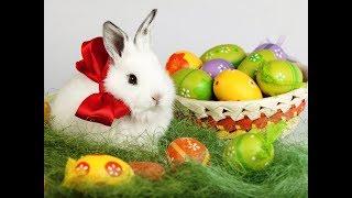 Красивое поздравление с  Пасхой!  Со светлым праздником вас, люди!