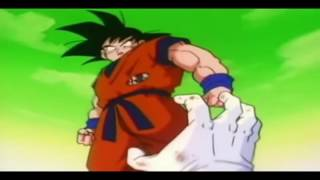 DBZ   In The End