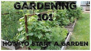 When to start gardening