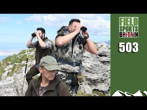 Fieldsports Britain – Hunting a Barbecue Buck