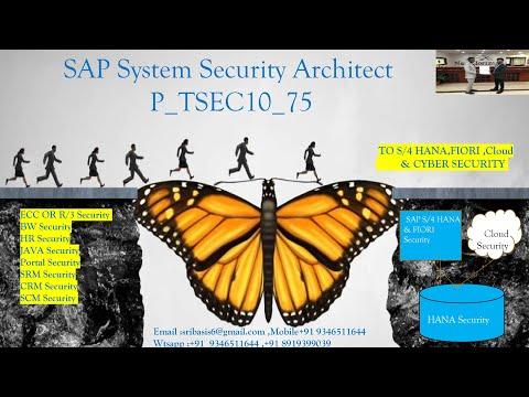 SAP System Security Architect - ECC || S4HANA || S/4HANA || FIORI ...