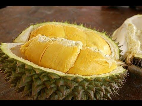 Video 6 Manfaat Penting Durian Yang Sangat Dibutuhkan Tubuh