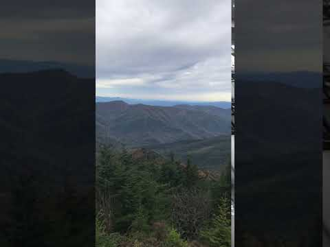 Video Of Maple Camp Bald, NC